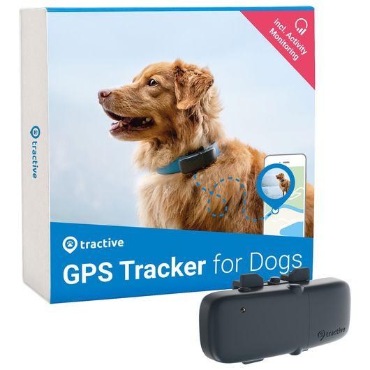 Tractive GPS hund