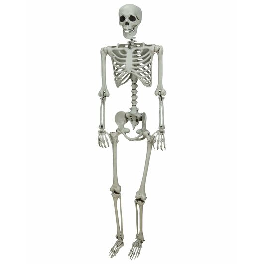 Halloween - Skelet 150 cm
