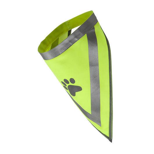 Hunderefleks trekant
